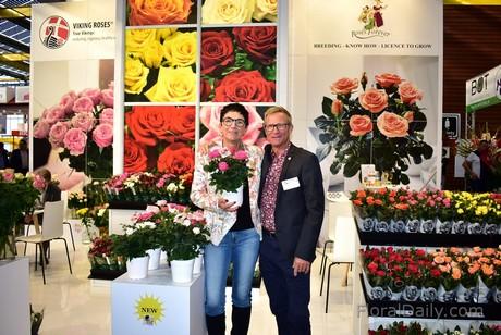 Roses Forever: Ra mắt 3 giống hoa hồng thơm trồng chậu có độ bền hoa cao