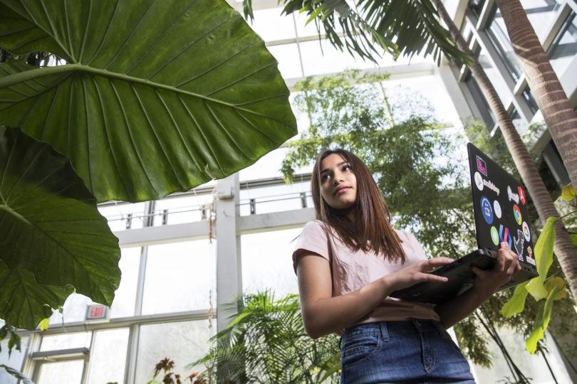 Ứng dụng công nghệ AI trong việc chuẩn đoán bệnh ở cây trồng